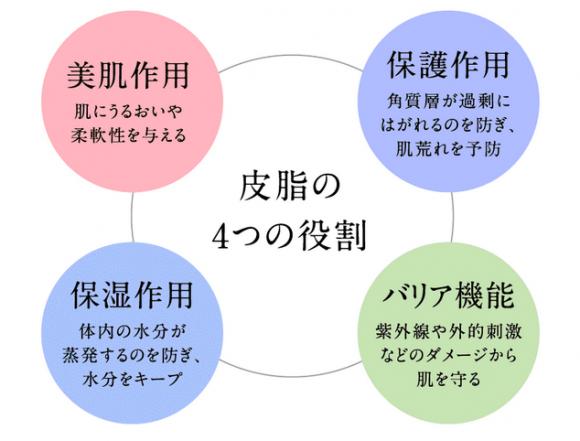 皮脂の4つの役割